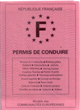 photo-permis-de-conduire-B-francais-small